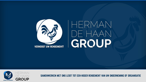 De Haan PALLETINDUSTRIE/GROUP